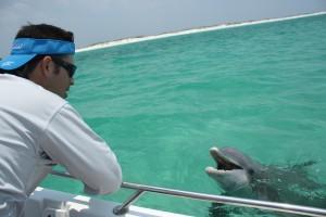 Last Local Guide Service, Panama City Beach- Dolphin