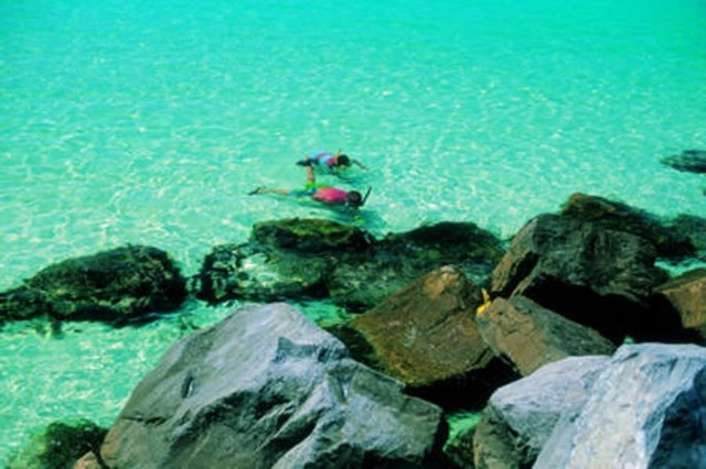 Best Dolphin Tours In Panama City Beach