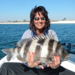 Last Local Guide Service britton sheepshead
