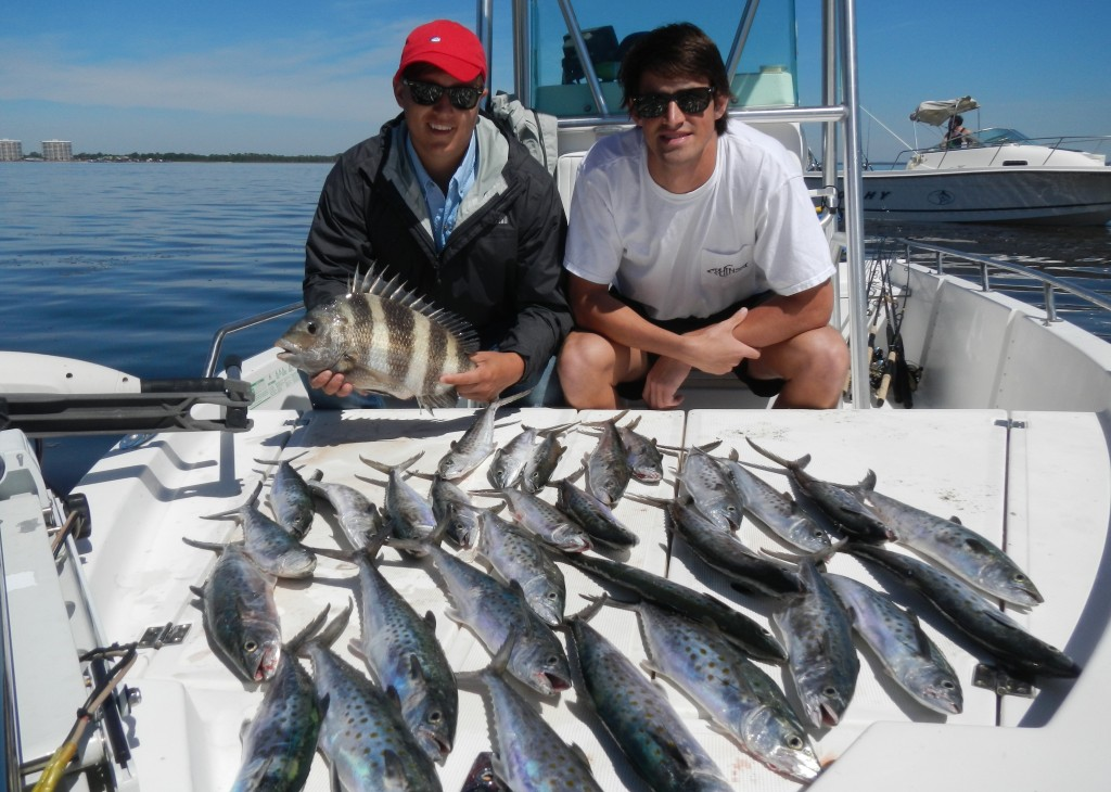 Last local guide service panama city beach spanish for Panama city fishing report