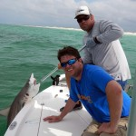 Last Local Guide Service- Blacktip Shark (Phillips1)