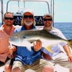 Last Local Guide Service- Jack Crevalle (Wares2)